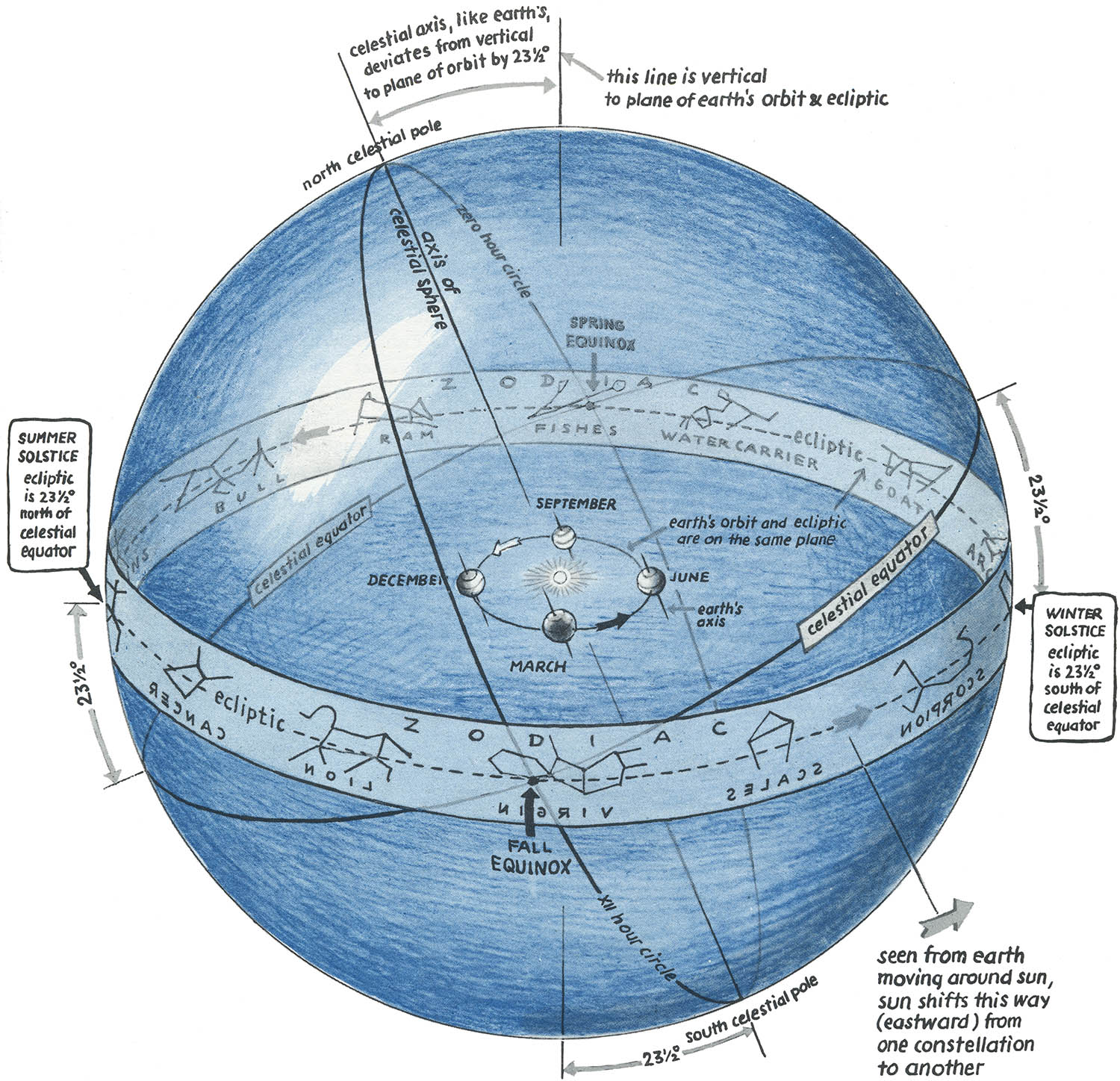 Draw A Labeled Diagram Of With The Sun At The Center Of The Celestial Sphere