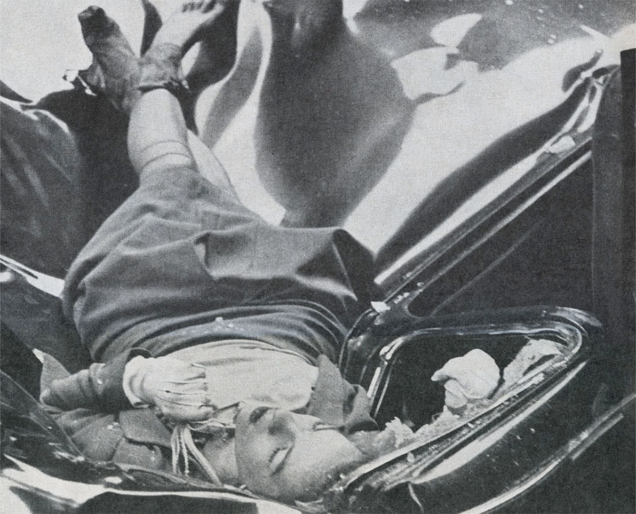 Evelyn McHale, click for larger image